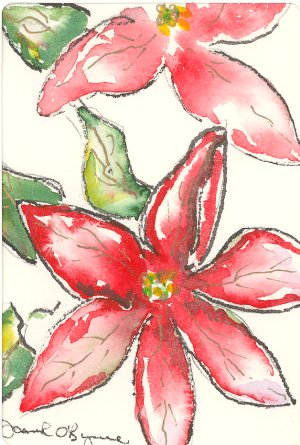 poinsettias, aquarelle de Joan O'Byrne